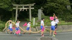 「因幡の菖蒲綱引き」子どもたちが主役