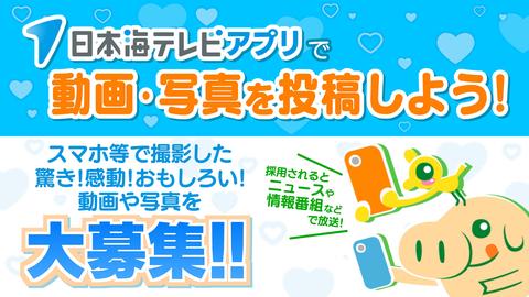 日本 海 テレビ ニュースevery日本海/日本海テレビ